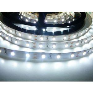 LED Solution CRI LED pásek 12W/m 12V bez krytí IP20 Barva světla: Studená bílá 07723 obraz