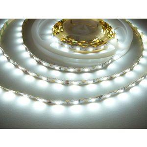 LED Solution Ohebný LED pásek 6, 2W/m 12V bez krytí IP20 Barva světla: Studená bílá 07806 obraz