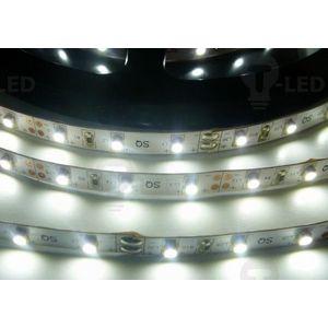 LED Solution LED pásek 4, 8W/m 12V bez krytí IP20 Barva světla: Studená bílá 07105 obraz