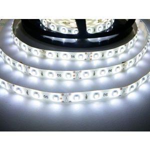 LED Solution LED pásek 4, 8W/m 12V s krytím IP54 Barva světla: Studená bílá obraz
