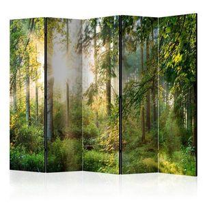 Paraván Untamed Nature II Dekorhome obraz