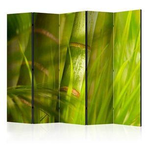 Paraván Bamboo - nature zen Dekorhome 225x172 cm (5-dílný) obraz