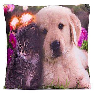 Dekorativní polštář s LED osvětlením Kočka a pes - 38x38 cm obraz