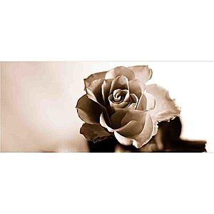 Dekor skleněný - růže 1 20/50 obraz