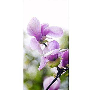 Dekor skleněný - magnólie 30/60 obraz