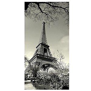 Dekor skleněný - Eiffelova věž 30/60 obraz