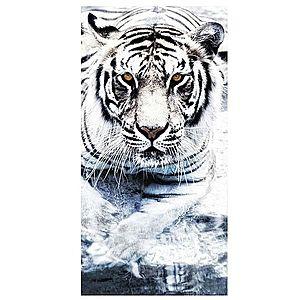 Dekor skleněný - tygr 30/60 obraz