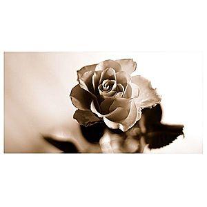 Dekor skleněný - růže 1 30/60 obraz