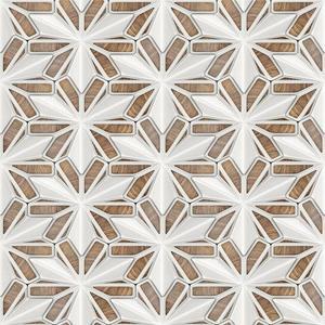 Skleněný panel 60/60 Starwood Polar Esg obraz