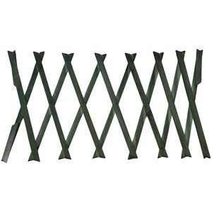 Zelený dřevěný žebřík obraz