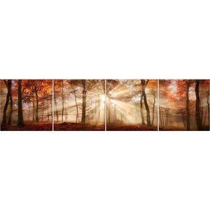 Skleněný panel 60/240 Forest-1 4-Elem obraz