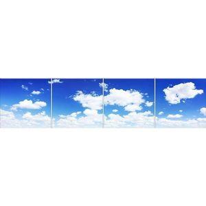 Skleněný panel 60/240 Sky-1 4-Elem obraz