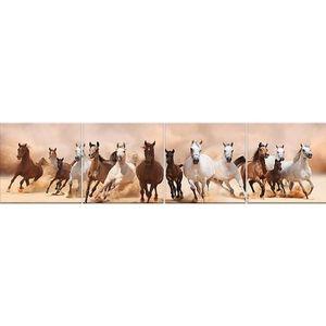 Skleněný panel 60/240 Horses 4-Elem obraz