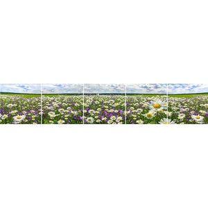 Skleněný panel 60/300 Flowers-3 5-Elem obraz