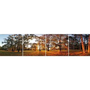Skleněný panel 60/240 Forest-2 4-Elem obraz