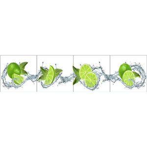 Skleněný panel 60/240 Citrus-White 4-Elem obraz