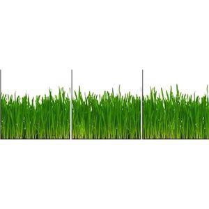 Skleněný panel 60/180 Grass 3-Elem obraz