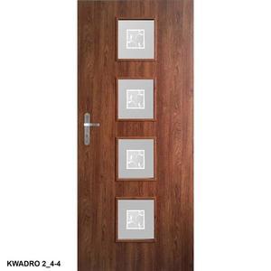 Dveře interiérové Kwadro 2 obraz
