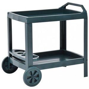 Nápojový vozík plast Dekorhome Zelená obraz
