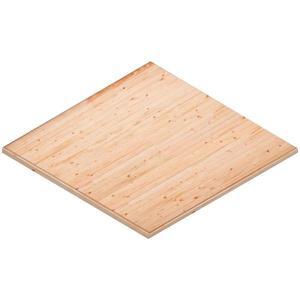 Podlaha pro domek Hiacynt 316/316 obraz