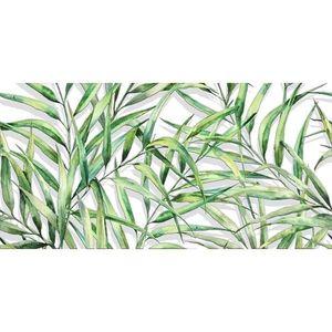palmové listy obraz